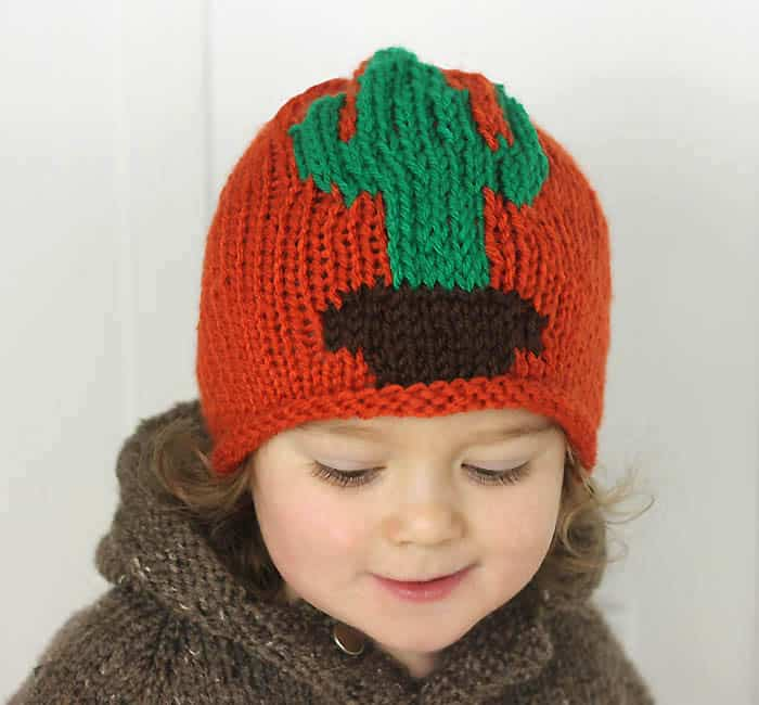 Cactus Baby Hat Free Knitting Pattern by Gina Michele