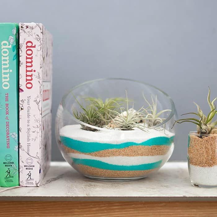 Sand Art Air Plant Terrarium DIY
