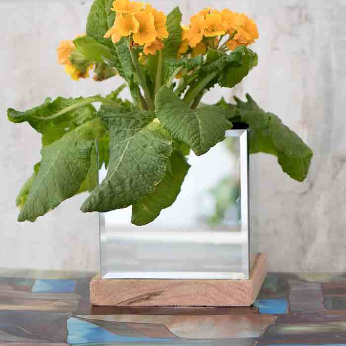 Mirror Planter DIY
