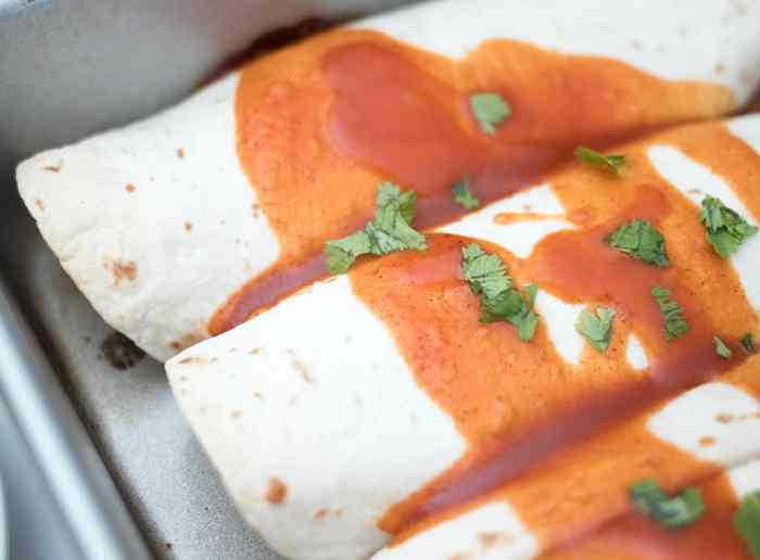 Easy Vegan Enchiladas Recipe by Gina Michele