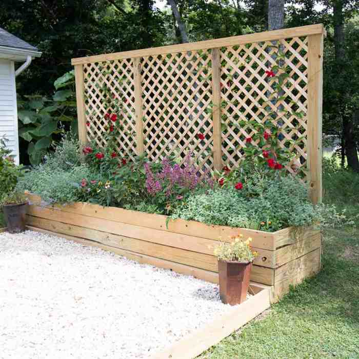 How to Build a Privacy Screen Planter