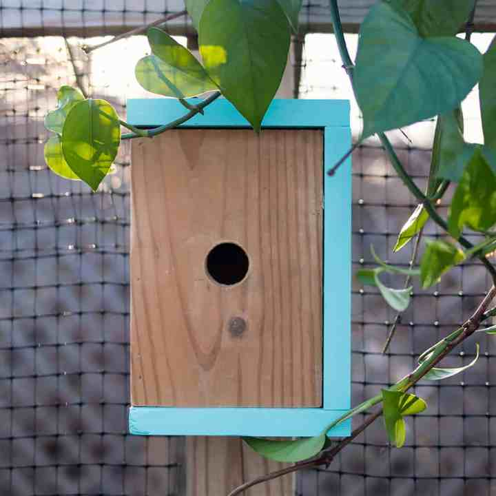How to Build an Easy Modern Birdhouse
