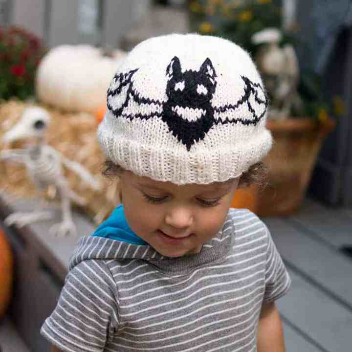 Kids Bat Hat Knitting Pattern