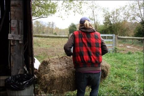 farm19_web