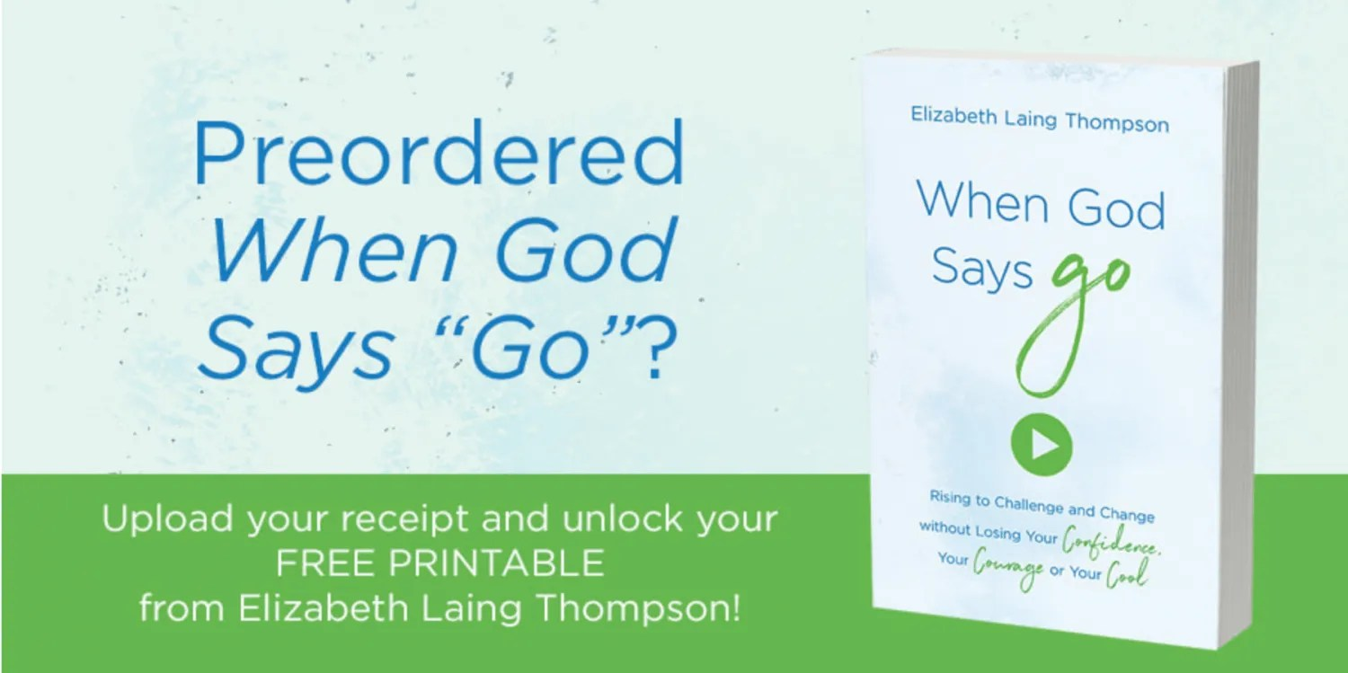 Preorder When God Says Go