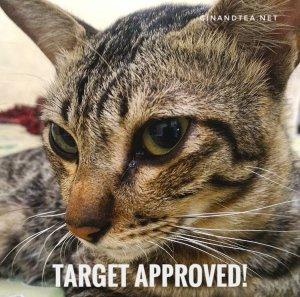 new-target