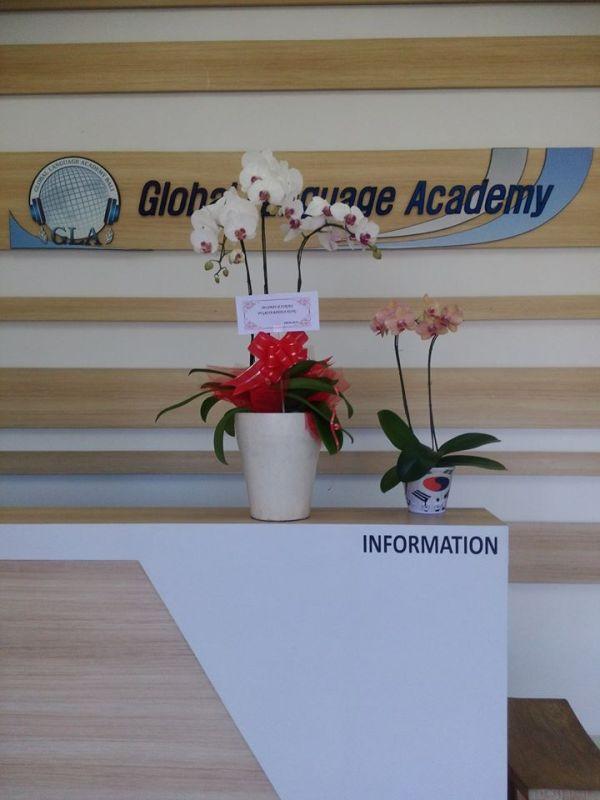 gla-bali-kursus-bahasa-korea