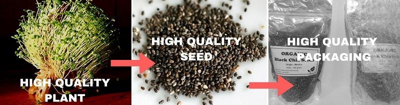 chia seed kualitas baik