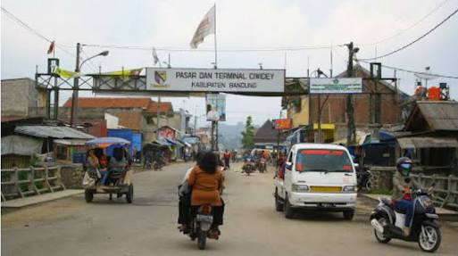 Jual Bawang Putih Tunggal Bandung