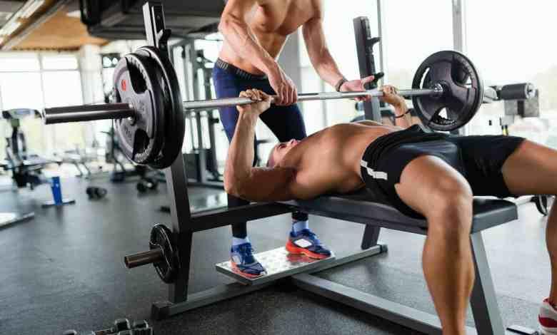 melhores exercicios para o peito