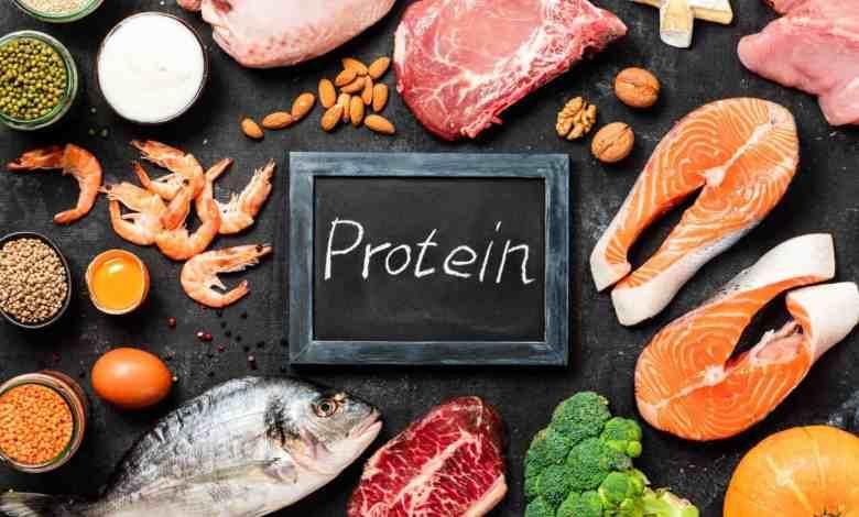 Proteína, o que é e para que serve?