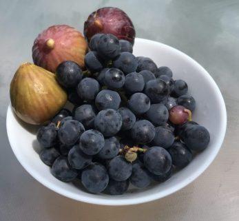 פירות הקיץ האחרונים