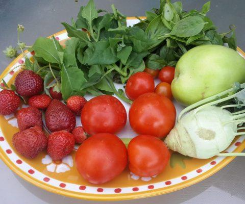 יולי-אוגוסט (תמוז ואב) – פירות הקיץ המתוקים