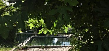 תמונת נוף בבוסתן כיאט