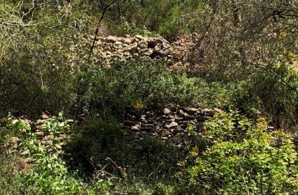 נחל עובדיה (מארס 2020) העיר האבודה - לאורך היובל הדרום מזרחי - שרידי טראסות ומבנה