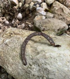 בנחל עובדיה נותרו מעט שרידים עתיקים - פרסת סוס שהלך פעם בשביל שלאורך האפיק