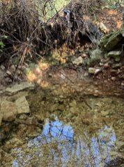 נחל עובדיה - מים זורמים בחלקים מהנחל אחרי גשם