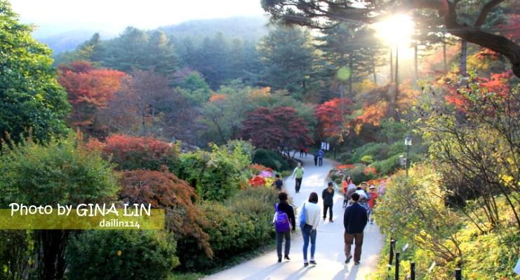 京畿道景點》美到不行的晨靜樹木園(아침고요수목원) 韓劇信義、原來是美男MV、電影情書、朝鮮名偵探、韓國綜藝節目슈퍼맨이 돌아왔다 超人回來了 拍攝景點