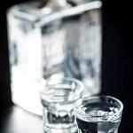 Flaske og to shotglas med god gin i