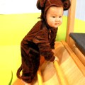 Little Monkey Costume 2011