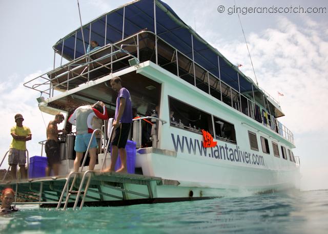 Koh Lanta - Scubafish diving
