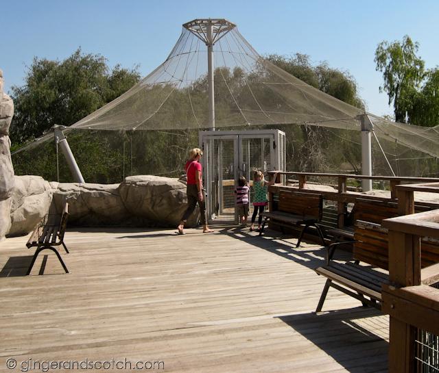 Al Ain Zoo - aviary