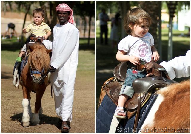 Al Ain Zoo - pony rides