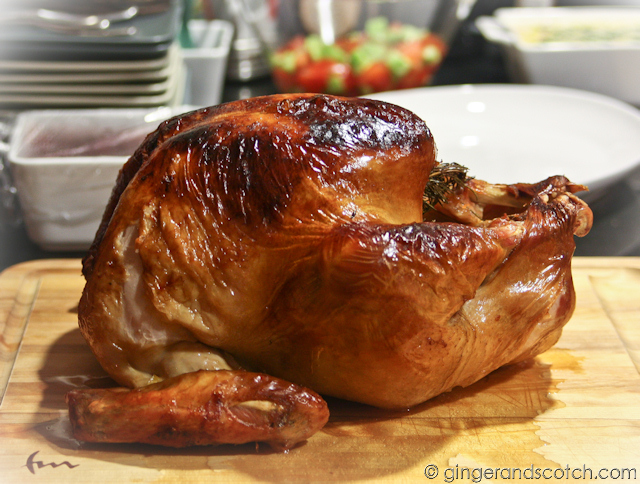 Thanksgiving Turkey 2012