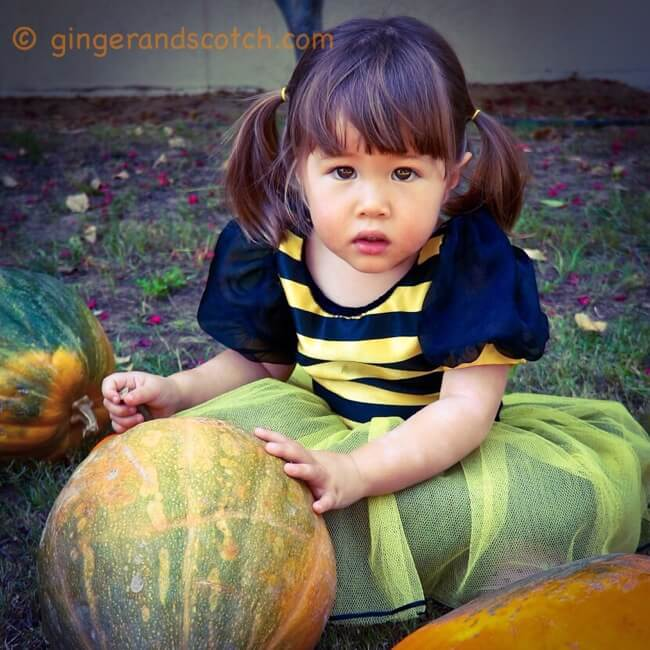 October 1 2015 Rachel Cericola 1 Comment: Ginger And Scotch