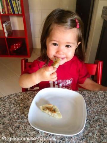 Li'L Ginger eating potstickers