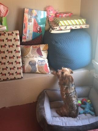 crash-and-presents