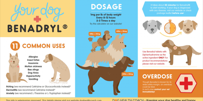 How Much Benadryl for a Dog