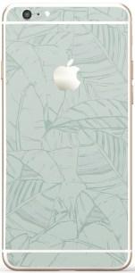 Iphone Leaf mint