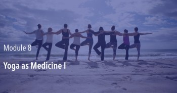 Yoga as Medicine I (Module 8) – Fall 2018 NEW DATE