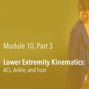 Lower Extremity Kinematics