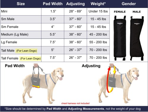 small resolution of dog breeds size chart