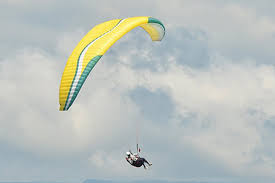 Paragliding Wings