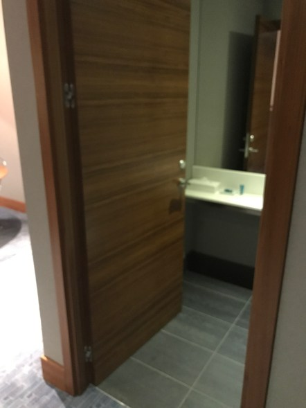 Separate lavatory in the aLoft Excel