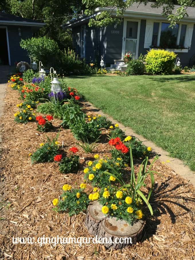 Flower garden makeover at Gingham Gardens.