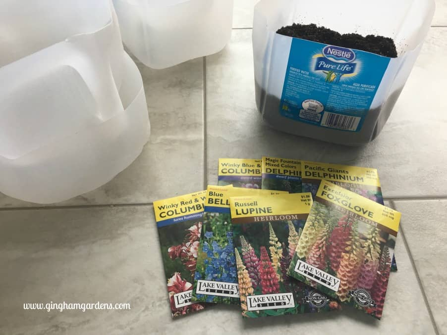 Winter Sowing - Learn How to Grow Perennials in the Winter