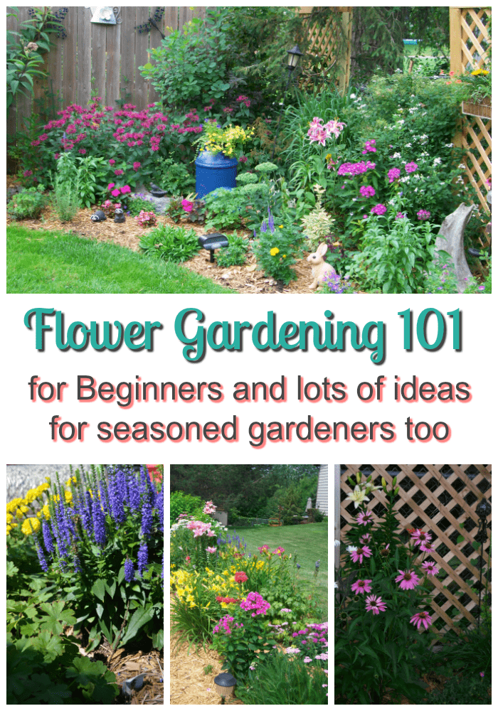Superieur Flower Gardening 101 For Beginners And Lots Of Ideas For Seasoned Gardeners  Too.