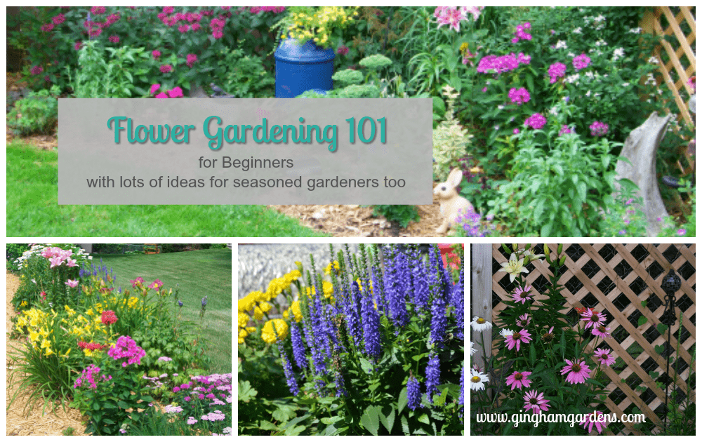 flower gardening for beginners. flower gardening 101 for beginners and lots of ideas seasoned gardeners too.