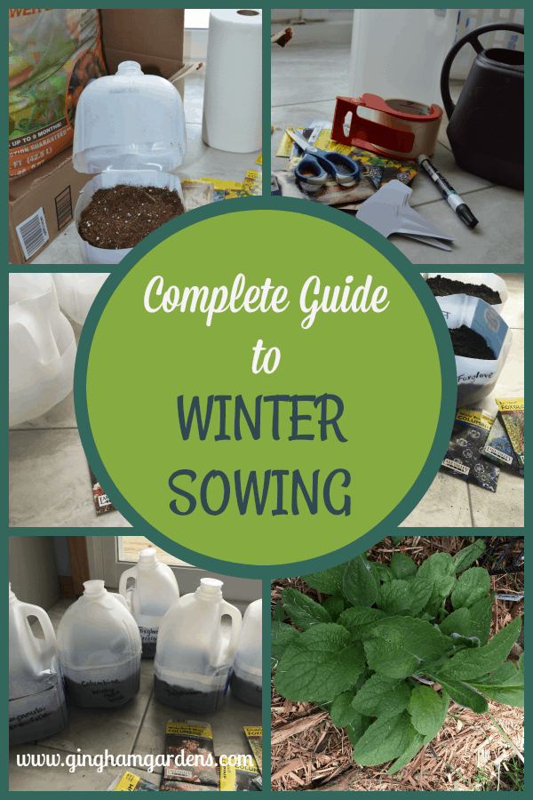 Complete Guide to Winter Sowing