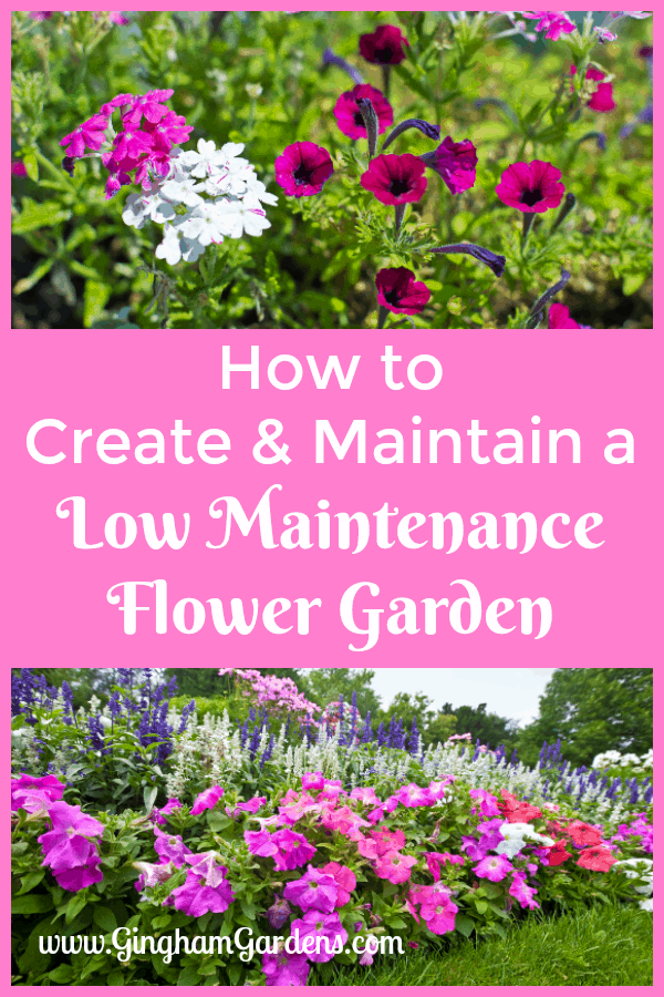Creating And Caring For A Low Maintenance Flower Garden Gingham Gardens