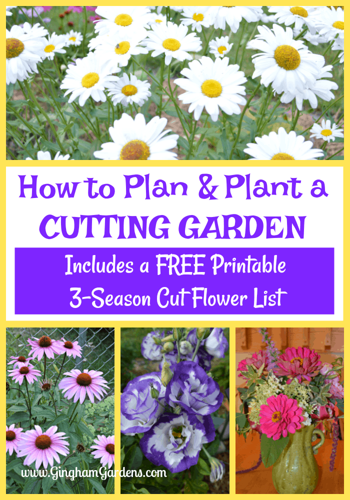 Flower - How to Plan & Plant a Cutting Garden