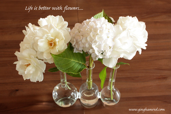 lifeisbetterwithflowers