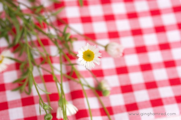 gingham and flower