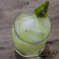 Gin Cocktails: il Gin Basil Smash