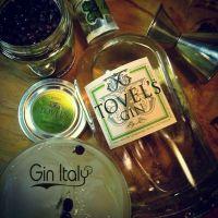 Tovel's Gin la recensione di GinItaly