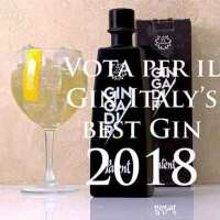 Gin Italy's best Gin of 2018